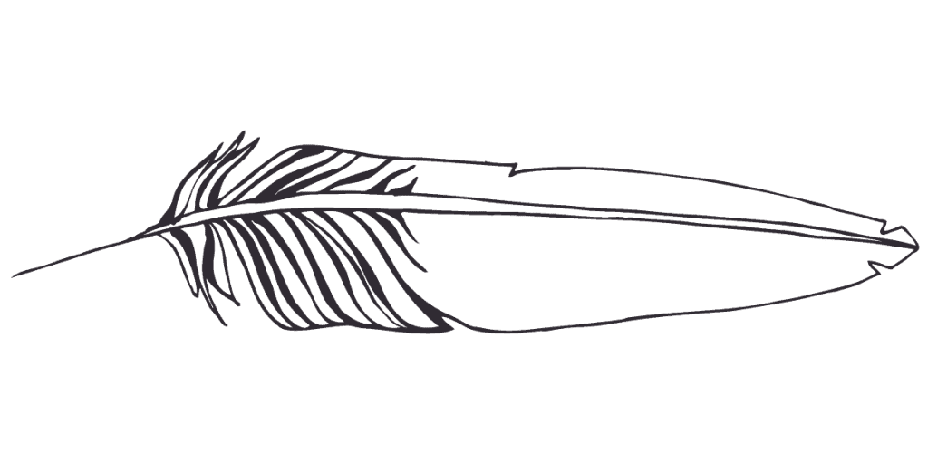 What does finding a white feather mean? - Symbolism of a white feather